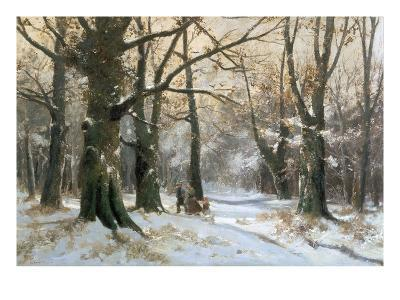 Returning Home Through the Winter Forest