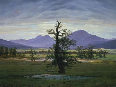 Der Einsame Baum (Dorflandschaft Bei Morgenbeleuchtung) (See also Image Number 1433, 1823