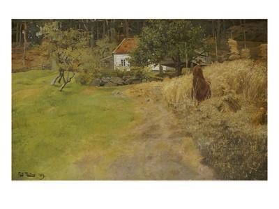 Bauersfrau Bei Der Erntearbeit, 1889