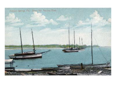 Tarpon Springs, Florida - Anclote River Scene