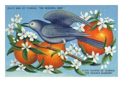 Florida - Mockingbird and Orange Blossoms, State Bird and Flower