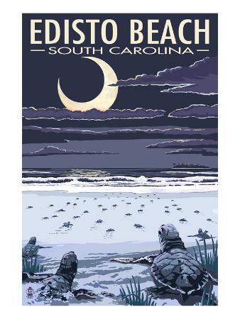 Edisto Beach, South Carolina - Sea Turtles Hatching