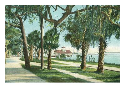 Daytona Beach, Florida - Yacht Club View Through Palm Trees