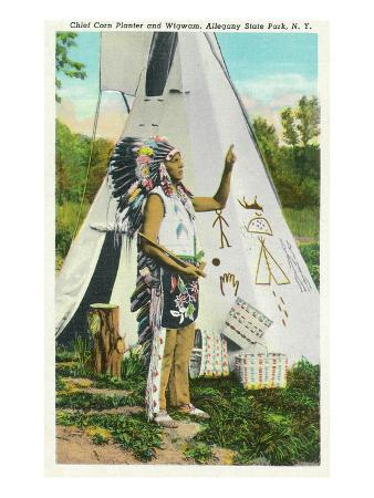 Allegany State Park, New York - View of Chief Corn Planter and Wigwam