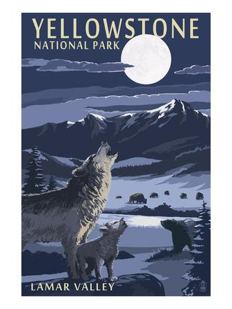 Lamar Valley Scene, Yellowstone National Park