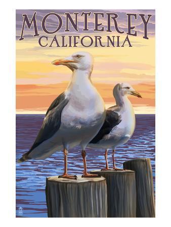 Monterey, California - Sea Gulls