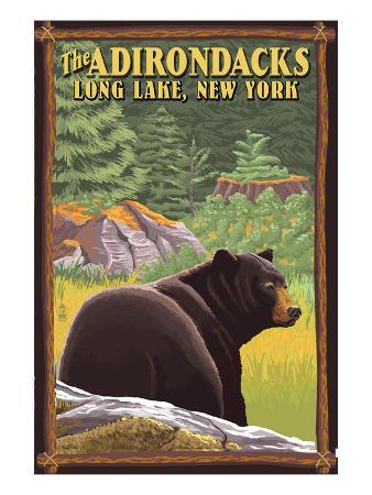 The Adirondacks - Long Lake, New York State - Black Bear in Forest
