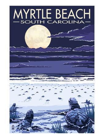 Myrtle Beach, South Carolina - Baby Sea Turtles