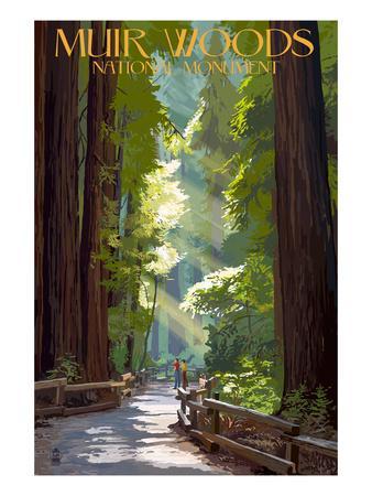 Muir Woods National Monument, California - Pathway