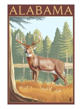Alabama White Tailed Deer