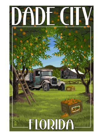 Dade City, Florida - Orange Orchard Scene