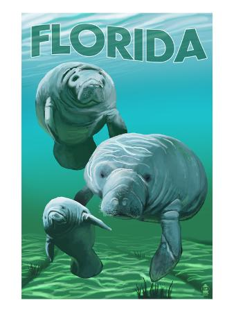 Florida - Manatees