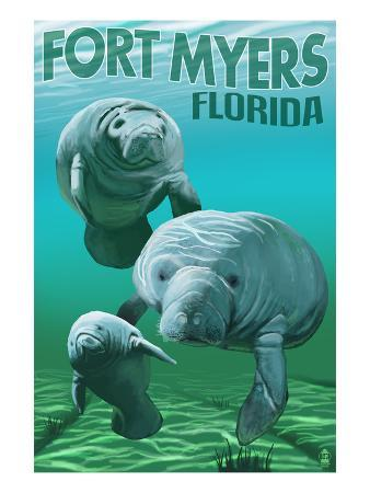 Manatees - Fort Myers, Florida
