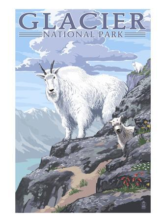 Mountain Goat and Kid - Glacier National Park, Montana