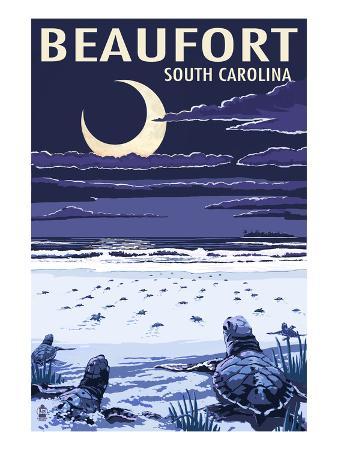 Beaufort, South Carolina - Sea Turtles Hatching