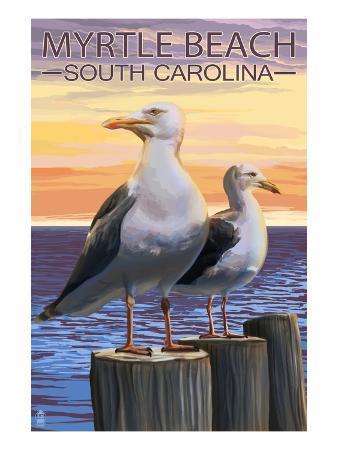 Myrtle Beach, South Carolina - Seagulls
