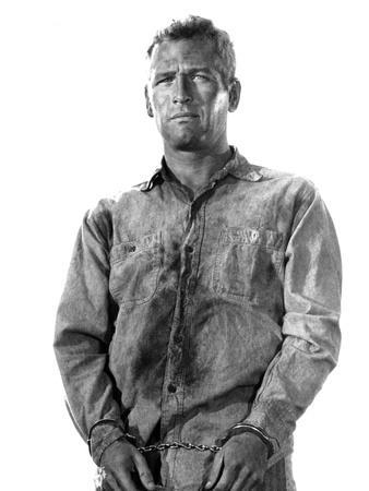 Cool Hand Luke, Paul Newman, 1967