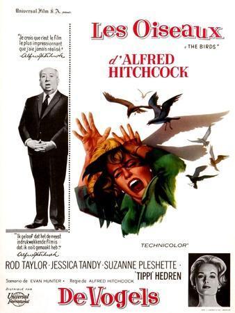 The Birds, Tippi Hedren, Alfred Hitchcock, 1963
