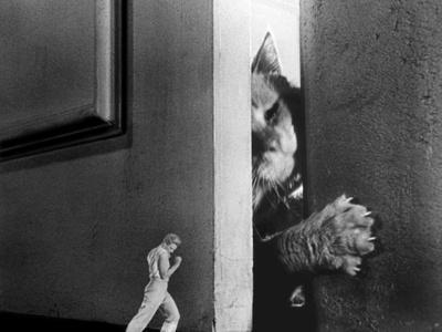 The Incredible Shrinking Man, Grant Williams, 1957
