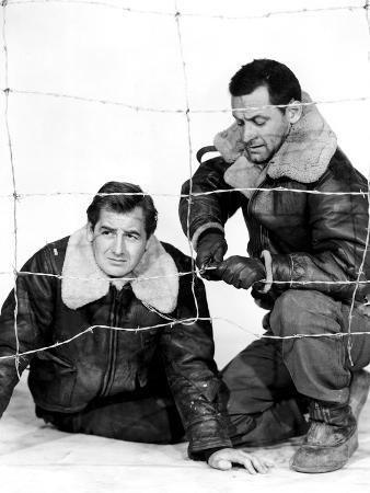 Stalag 17, Don Taylor, William Holden, 1953