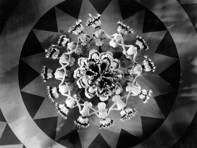 Whoopee!, 1930