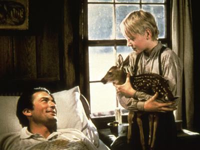 The Yearling, Gregory Peck, Claude Jarman Jr., 1946