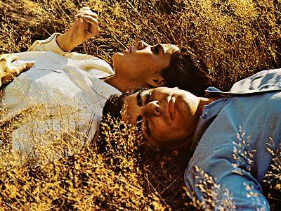 Goodbye Columbus, Ali MacGraw, Richard Benjamin, 1969