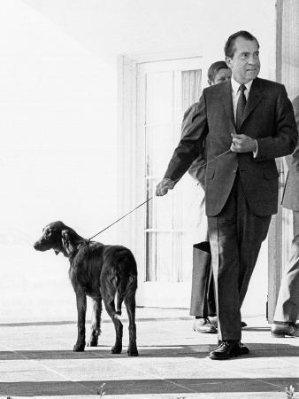 Richard Nixon with His Six Month Old Irish Setter, King Timahoe