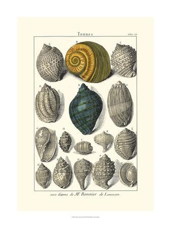 Seaside Treasures III