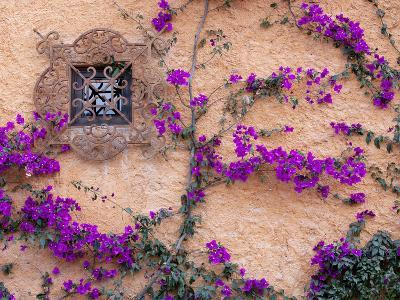 Ornamental Window, San Miguel De Allende, Mexico