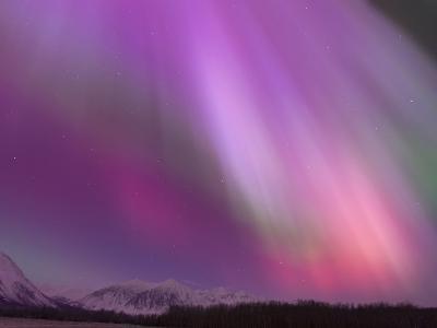 Aurora Borealis, Wrangell Mountains, Alaska, USA