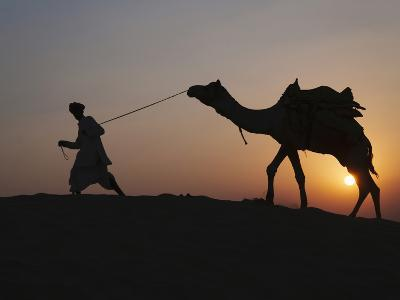 Man with Camel on the Desert at Sunset, Jodphur, Rajasthan, India