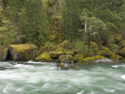 The Umpqua River, Oregon, USA
