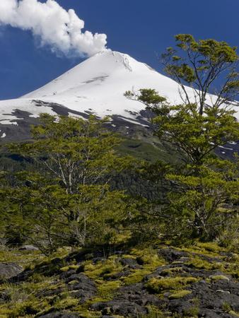 Villarrica Volcano, Villarrica National Park, Chile