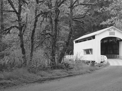 Wild Cat Covered Bridge, Lane County, Oregon, USA