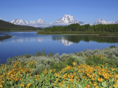 Grand Tetons from the Oxbow, Grand Teton National Park, Wyoming, USA