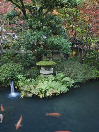 Japanese Garden, Tokyo, Japan