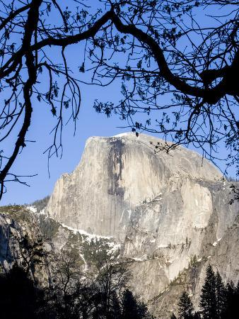 Framed Half Dome Seen from the Valley Floor, Yosemite, California, USA