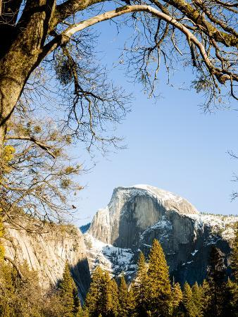 Half Dome from Valley Floor, Yosemite, California, USA