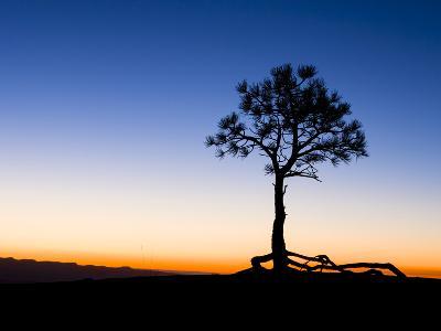 Before Sunrise at Bryce Canyon National Park, Utah, USA