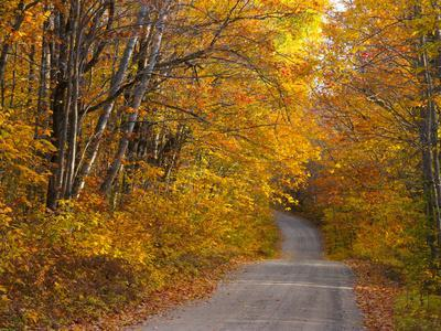 Fall Colours, Baxter State Park, Maine, New England, United States of America, North America