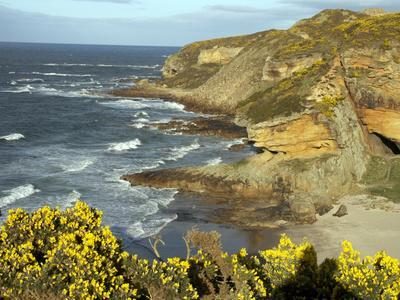 Cliffs Near Findhorn on the Morayfirth, Scotland, United Kingdom, Europe