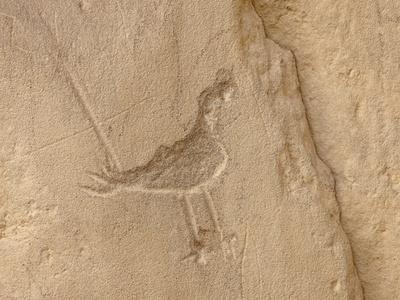 Petroglyph, Chaco Culture Nat'l Historical Park, UNESCO World Heritage Site, New Mexico, USA