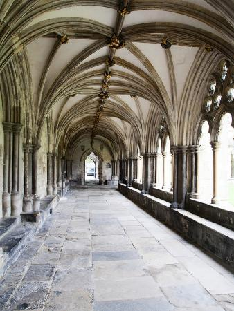 Norwich Cathedral Cloisters, Norwich, Norfolk, England, United Kingdom, Europe