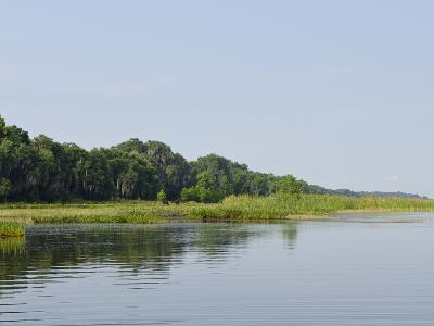 Everglades, UNESCO World Heritage Site, Florida, United States of America, North America