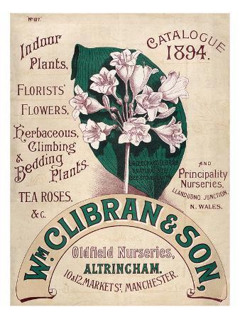 Catalogue 1894