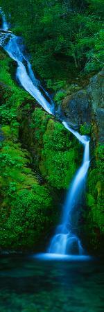 Waterfall in a Forest, Sullivan Falls, Opal Creek Wilderness, Oregon, USA