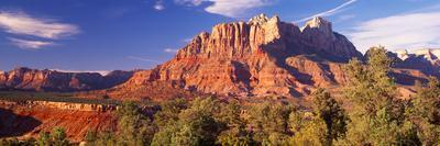Canyon Surrounded with Forest, Escalante Canyon, Zion National Park, Washington County, Utah, USA