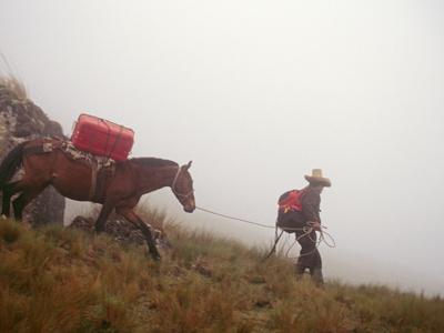 A Horseman Descends a Foggy Trail Through 'Halka' Grasslands