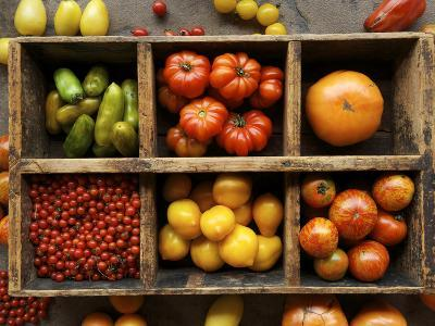 Tomato Varieties at the Seed Savers Exchange